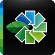 Snapseed – Incrível editor de fotos para Android, iPhone e iPad