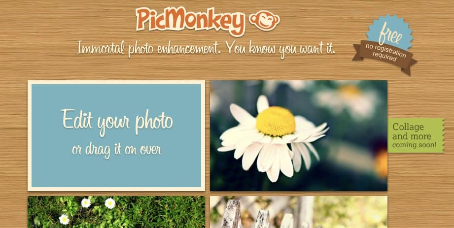 aplicativo picmonkey