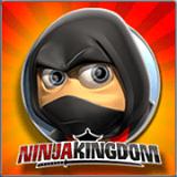 Ninja Kingdom