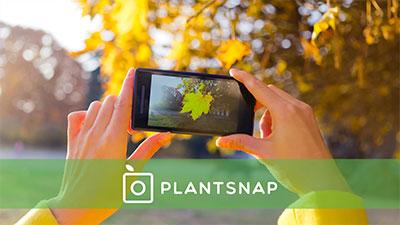 amantes da natureza plantsnap