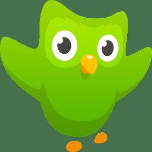duolingo app de android