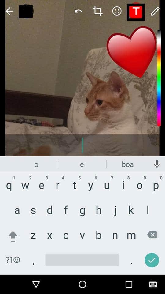 adicionar emojis nas fotos do whatsapp fim texto