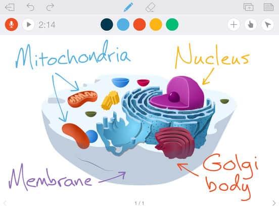 ferramentas-para-aula-online-whiteboard