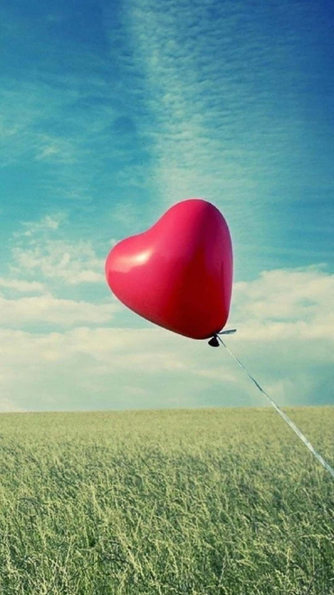 Love Balloon Valentines Day Gift Android Wallpaper