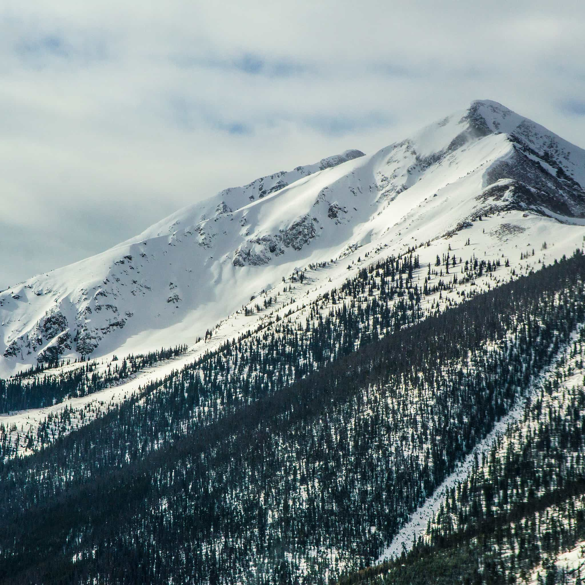 Papers.co-nf23-snow-landscape-mountain-winter-wonderful-android-medium