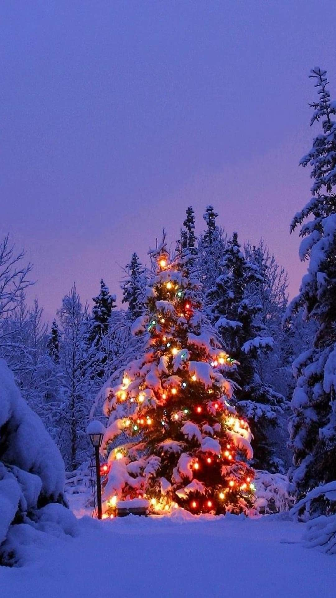 Snowy Decorated Christmas Tree Android Wallpaper