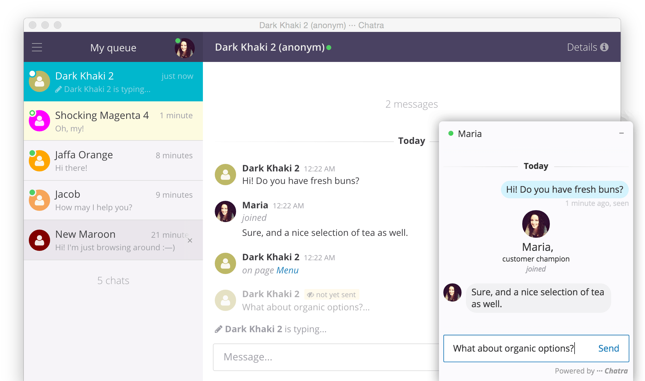 chats-para-sites-em-shopify-chatra