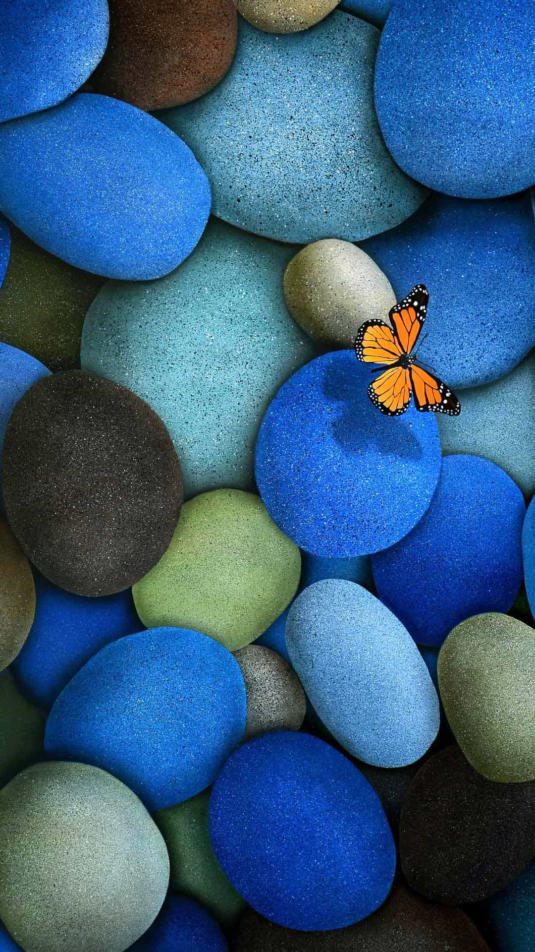 Blue Pebbles Orange Butterfly Android Wallpaper