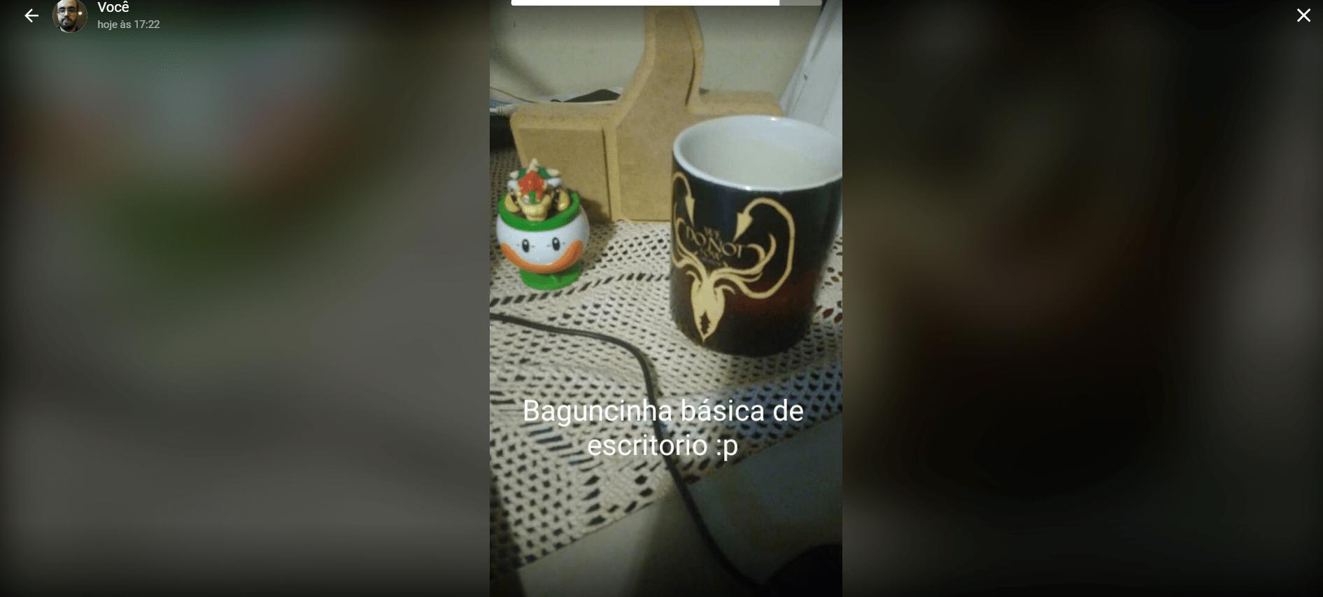 status-whatsapp-pc-visualizacao