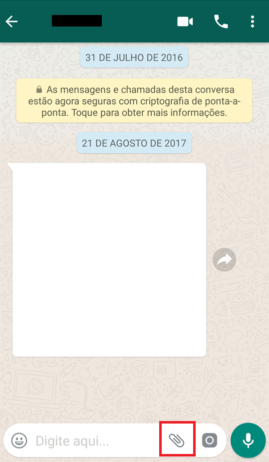 whatsapp opções