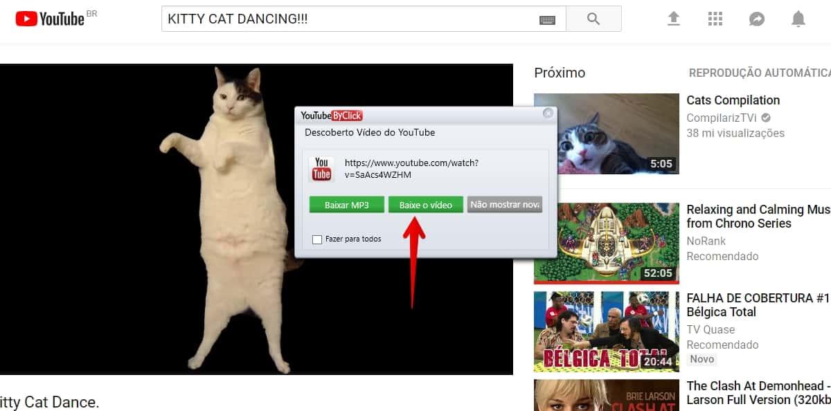 dicas para fazer download de videos