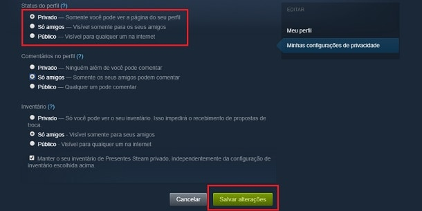 conta privada no steam
