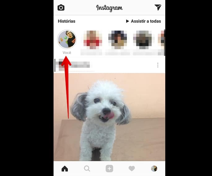 gif nas stories do instagram inicio