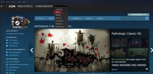 perfil do steam