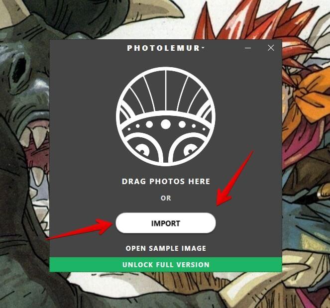 photolemur-importar