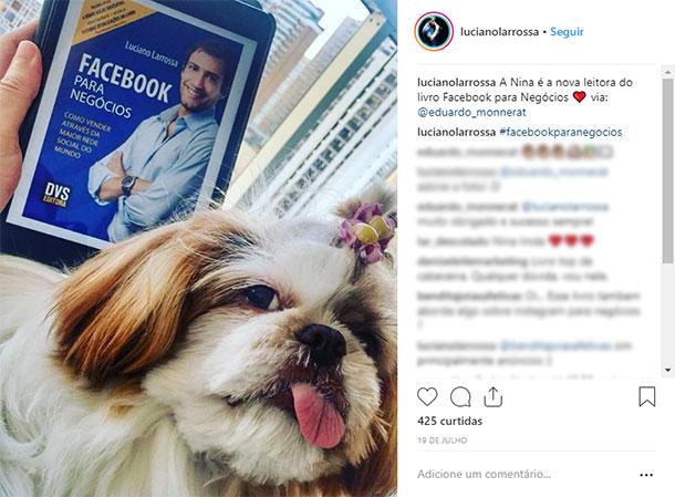 Ideias de posts para Instagram Animal de Estimação