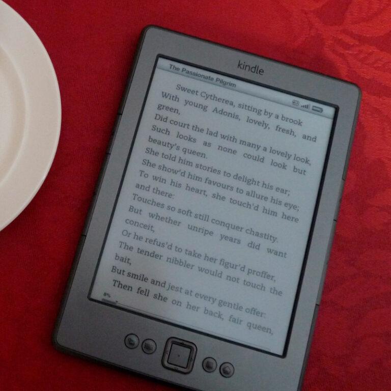 Leitor de livros digitais: 8 melhores opções