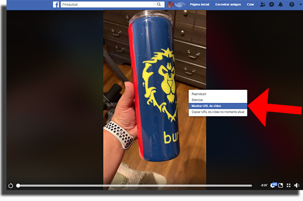 Mostrar URL do Video no Facebook