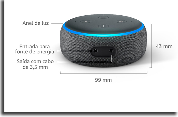 Entradas Echo Dot|