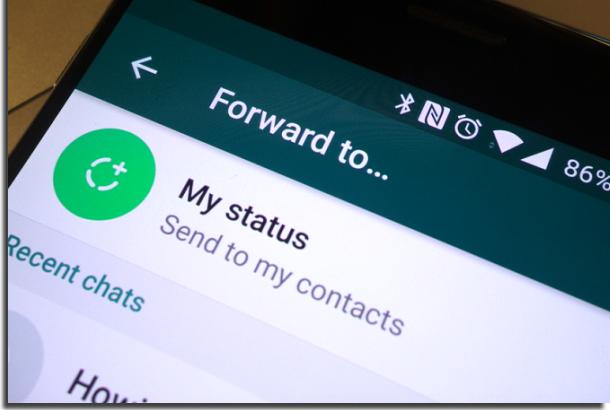 salvar status no android