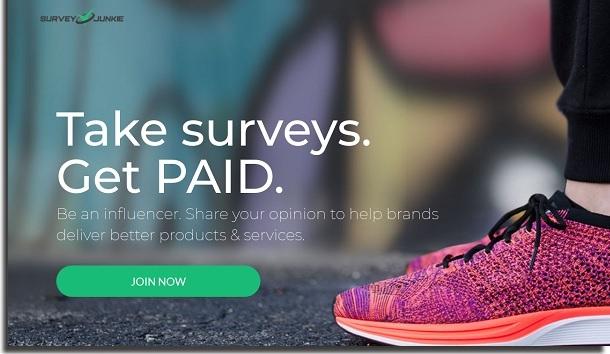 ganhar renda extra trabalhando em casa survey