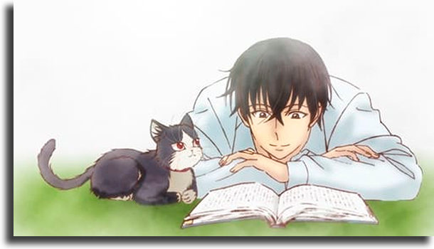 My Roommate is a Cat melhores animes de sempre