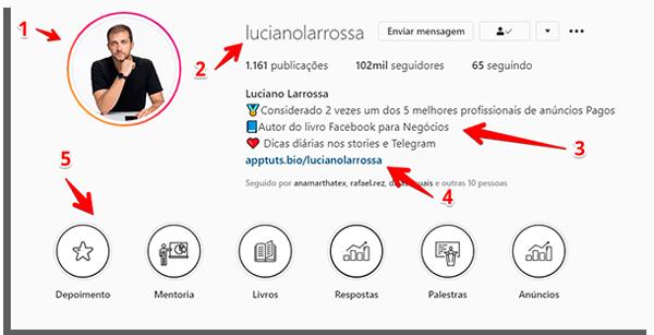 biografia do instagram de luciano larrossa