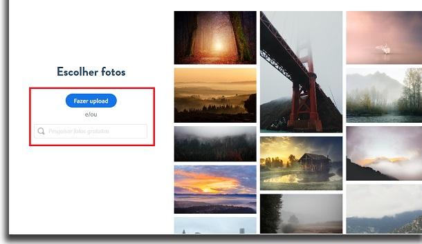 imagens do Adobe Spark