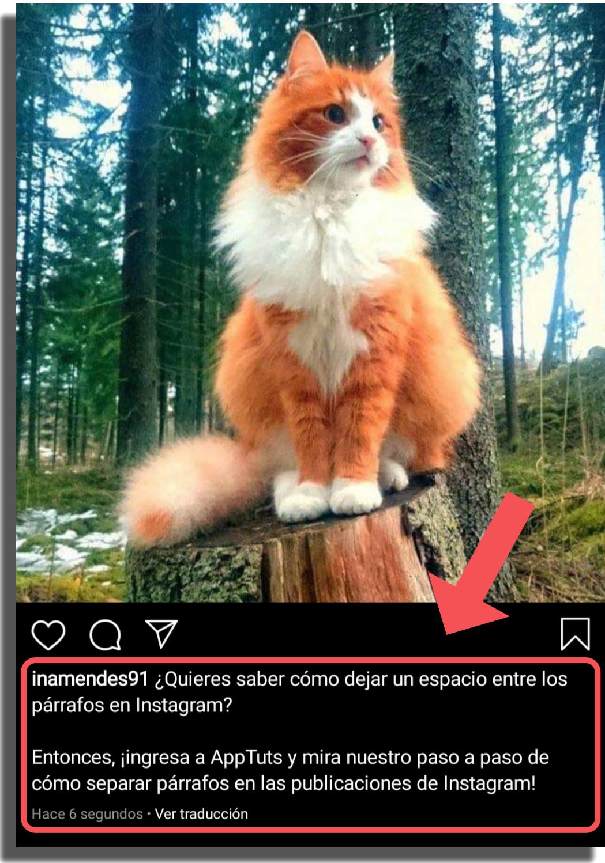 separar párrafos en Instagram método 1