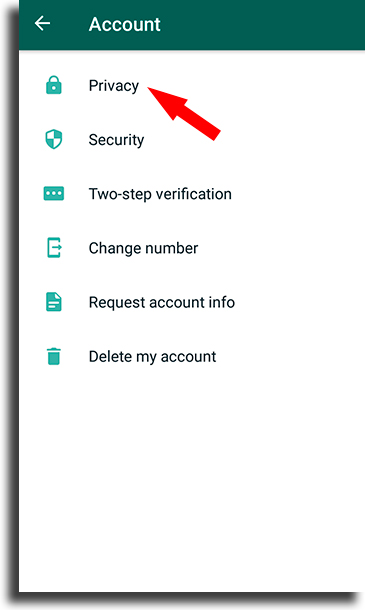 Privacy appear offline on WhatsApp