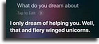 What do you dream about?