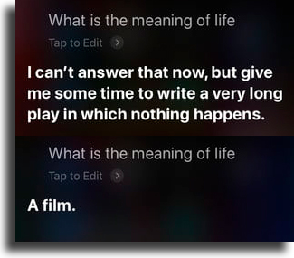 Meaning of life funny things to tell siri