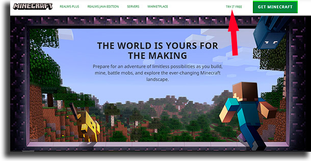 try it free play Minecraft for free
