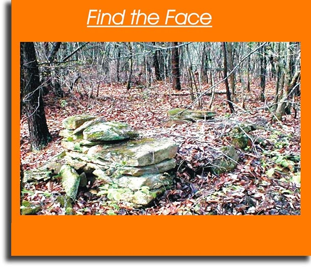 Find the face WhatsApp games