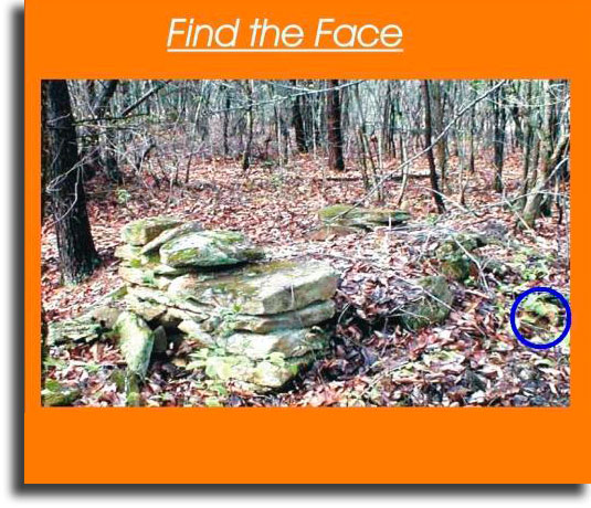 Find the face 2 WhatsApp games