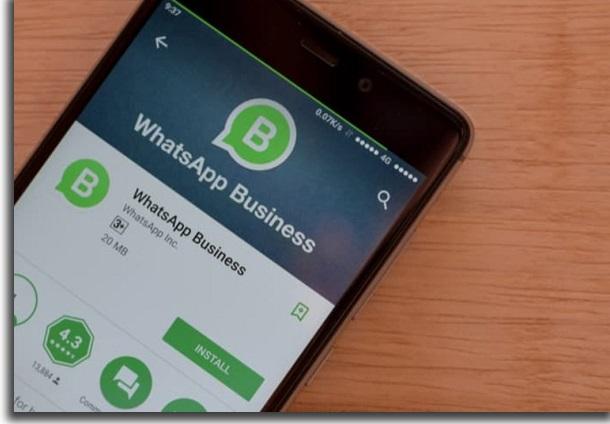 usando o whatsapp para empresas