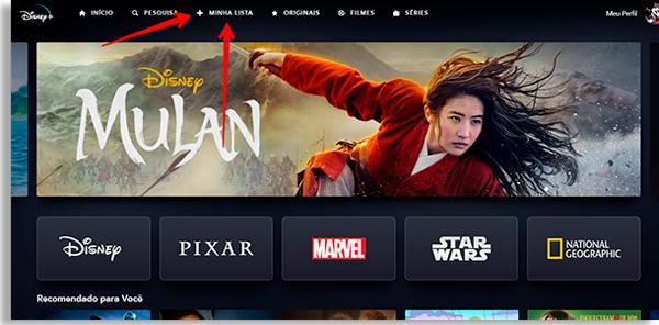 tela inicial do serviço com seta vermelha apontando para a opção +Minha Lista