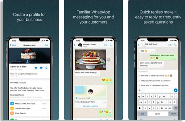 telas do whatsapp empresarial