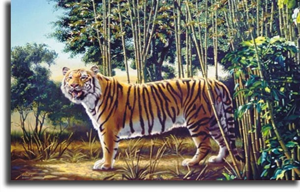 The Hidden Tiger fun WhatsApp games