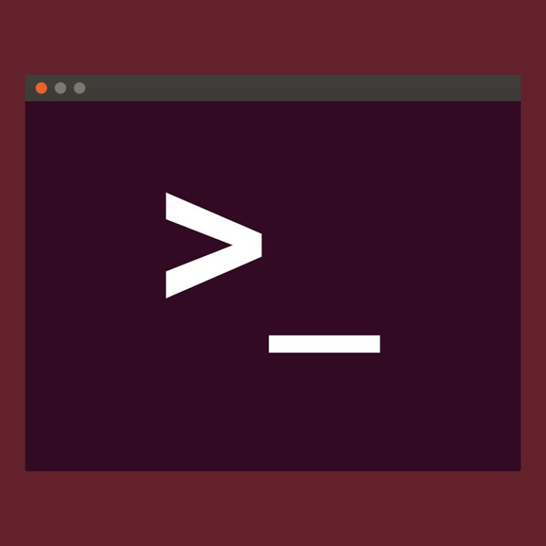 The 20 most useful Linux commands to use on the terminal!