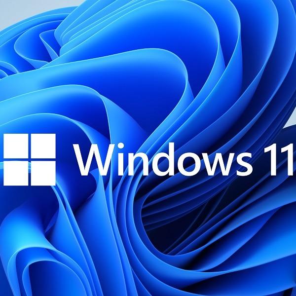 windows 11 capa