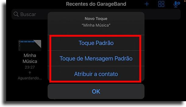 Escolher que tipo de toque transformar som do TikTok no despertador do iPhone